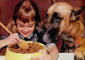 Dog Food 002