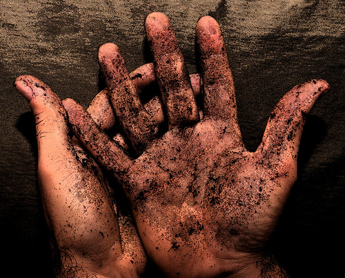 Wednesday Writing Prompt: Getting Your Hands Dirty