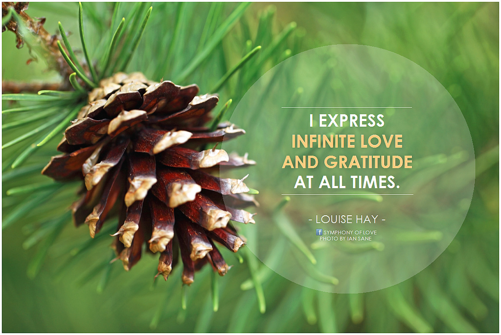 December 2015 Writing Prompt of the Month